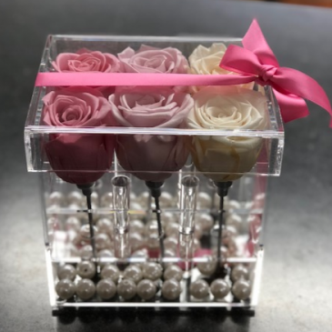 6 Preserved Roses in Acrylic Box with Pearls
