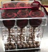 6 Preserved Roses with Gold stems