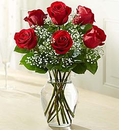 6 Red Rose Classic Vase