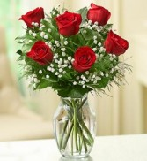 6 Red Roses Arranged in Clear Vase