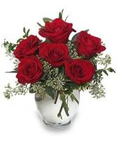 6 red roses in ginger vase
