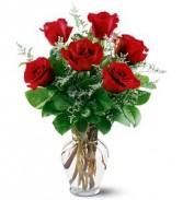 6 Red Roses (50c) Roses