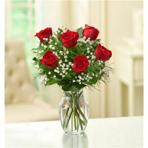 6 Roses in a Vase Arrangement