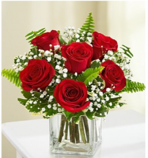 6 Stem Love's Embrace Roses Your Choice of Color