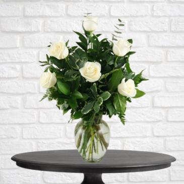6 White Roses
