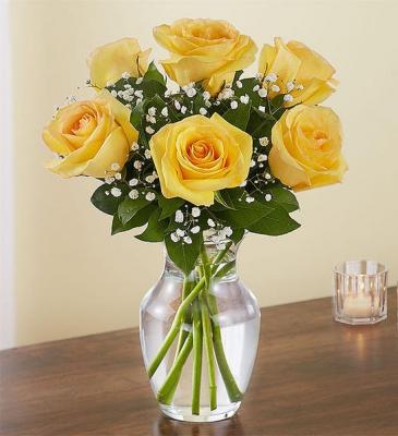 6 Yellow Roses  Vased Arrangement