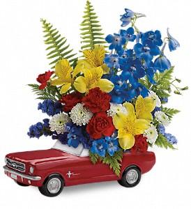 '65 Ford Mustang - 165 Arrangement