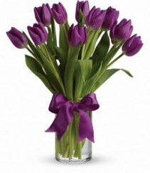 Passionate Purple Tulips Color May Vary