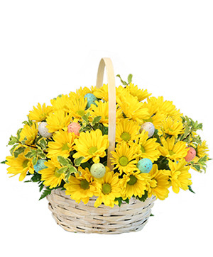Easter Egg-spression Basket Arrangement in Houston, TX | The Orchid Florist