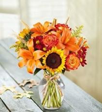 90831 Fall Flowers
