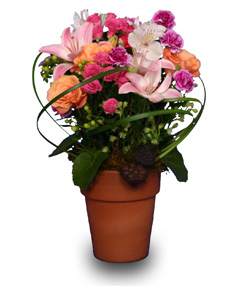 NANNA'S FLOWER GARDEN Terra Cotta Pot in New Milford, CT   RUTH CHASE FLOWERS