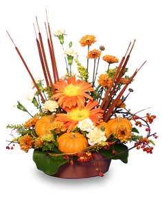 DELTA HARVEST SUNSET Floral Arrangement