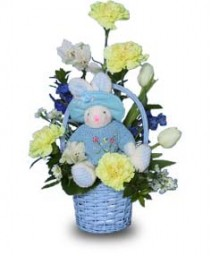 BABY BLUE BASKET Flowers for New Baby