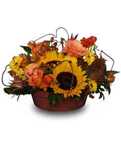 SUNFLOWER SENSATION Centerpiece in Miami, OK | B.Oliver's Florist, Gifts & Home Decor