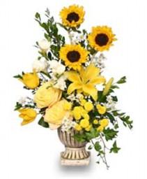 SUNLIGHT SPLENDOR Flower Arrangement