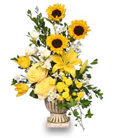SUNLIGHT SPLENDOR Flower Arrangement in Gig Harbor, WA | GIG HARBOR FLORIST TM- FLOWERS BY THE BAY LLC