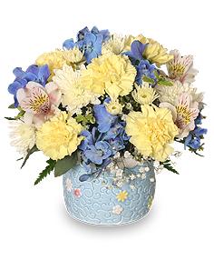 BABY BOY BLOOMS Floral Arrangement