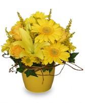 YELLOW AGLOW Flower Arrangement