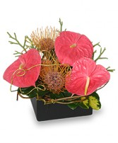 BEAUTY INTERTWINED Floral Arrangement