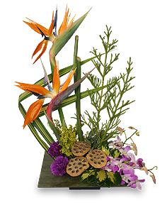 PARADISE GARDEN Floral Arrangement in Winston Salem, NC | RAE'S NORTH POINT FLORIST INC.