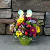 A Birthday Cupcake - Green Birthday Arrangement