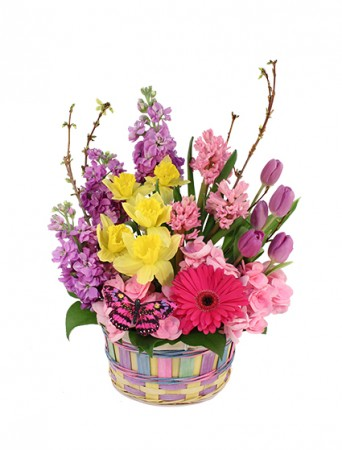 A breath of spring basket arrangement in charleston il bells a breath of spring basket arrangement mightylinksfo