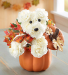 a-DOG-able® for Fall Fall flowers