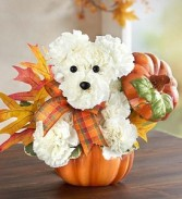 a-DOG-able® for Fall holiday