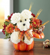 A-Dog-Able for Fall Keepsake container