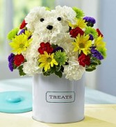 a-dog-able fresh flowers