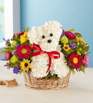 a-DOG-able in a basket  174311  in Beaufort, SC | Smiling Petals Flower Shop