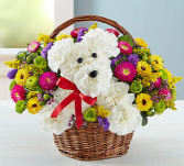 a-DOG-able® in a Basket Arrangement