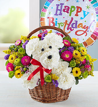 a-DOG-able® in a Basket Birthday Birthday basket