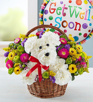 a-DOG-able® in a Basket Get Well  in Valley City, OH | HILL HAVEN FLORIST & GREENHOUSE