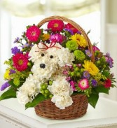 a-DOG-able in a Basket special arrangement
