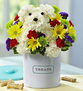 a-DOG-able treat tin 1800 flowers a-DOG-able