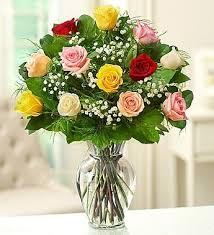 A Dozen Colored Roses
