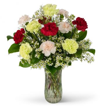 A Dozen Colorful Carnations