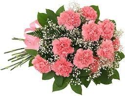Carnation Bouquet Bouquets