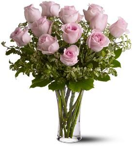A Dozen Light Pink Roses