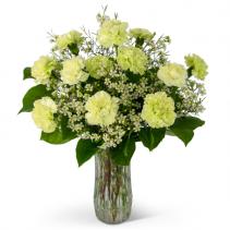 A Dozen Sweet Green Carnations Arrangement