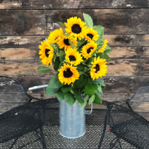 A Pitcher full of Sunshine