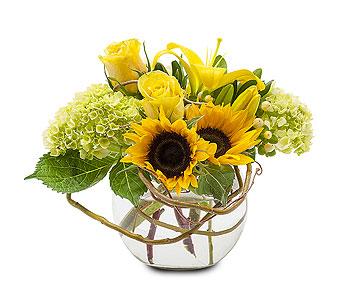 A Sunny Day Vase Arrangement