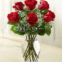 A Time For Love 6 Roses & Babies Breath In A Vase