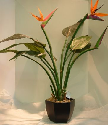 Bird of Paradise Artifical Plant