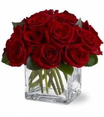 Modern  Square Rose 12 Rose in a Square vase