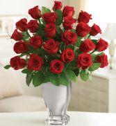 Red Premium Long Stem Roses 18 roses In Silver Vase