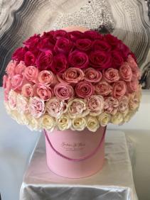 Abelyn Roses