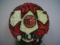 A.C.Milan Ball
