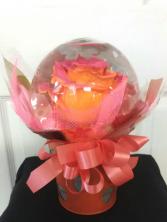 Acorn Crystal Circus Globe Rose Arrangement